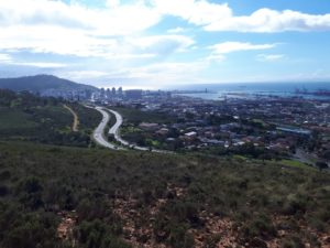 Photo: Green spaces in Cape Town (South Africa) (Credit: Patrick O`Farrell)
